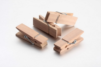 Wooden Pegs